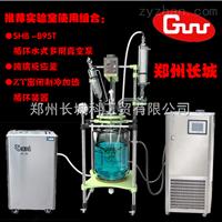 GR-10双层玻璃反应釜GR-10 郑州长城高硼硅玻璃材质特价
