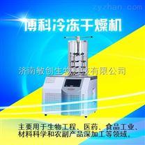 实验压盖型真空冷冻干燥机BK-FD10T台式冷冻干燥机