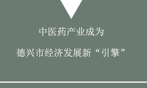 """中医药产业成为德兴市经济发展新""""引擎"""""""